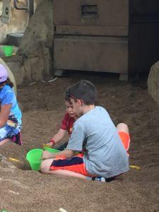 Best Kept Secret in Animal Kingdom Park