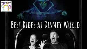 These are the best rides at Walt Disney World